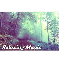 Relaxing Music - Sleeping Songs to Help You Relax,  Stress Relief, Healing Through Sound and Touch, New Age Music, Nature Sounds — Serenity Music Relaxation