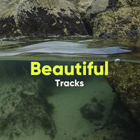 Beautiful Tracks — Spiritual Health Music Academy