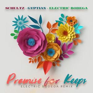 Matthew Schultz, Gyptian, Electric Bodega - Promise For Keeps
