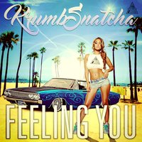 Feeling You — Krumb Snatcha