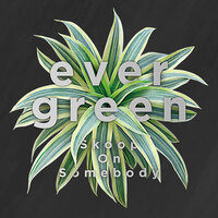 Evergreen — Skoop On Somebody