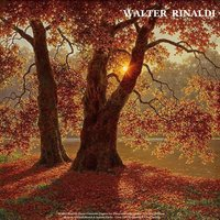Walter Rinaldi: Piano Concerto, Fugues for Piano and Other Songs - Chopin: Waltzes - Mozart: Turkish March & Sonata Facile - Liszt: La Campanella & Love Dream — Walter Rinaldi