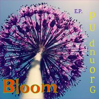 Ground Up - EP — Bloom