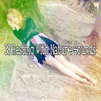 38 Resting With Nature Sounds — Nature Sounds Nature Music