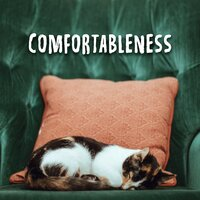Comfortableness: Ambient Music for Rest, Relax and Calm Down — Best Relaxation Music, Music to Relax in Free Time, Ambient Sounds Collection