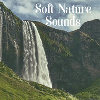 Soft Nature Sounds – Soothing Nature Waves, Ocean Sounds, Relaxing Music — Outside Broadcast Recordings