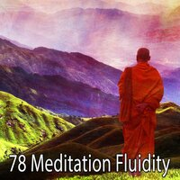 78 Meditation Fluidity — Classical Study Music