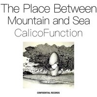 The Place Between Mountain and Sea — Calico Function