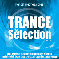 Mental Madness Trance Selection Vol. 1 — сборник