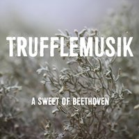 A Sweet of Beethoven — Trufflemusik