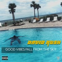 Good Vibes Fall from the Sky — David Rush