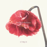 Don't Let Me Know — Cyrus