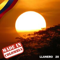 Made In Colombia / Llanero / 20 — сборник
