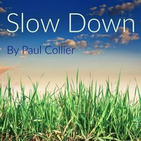 Slow Down — Paul Collier