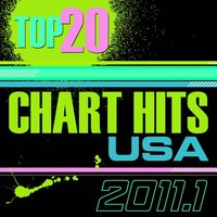 Top 20 Chart Hits 2011_1 USA — The CDM Chartbreakers