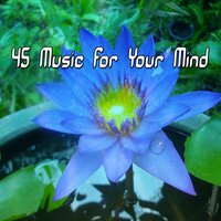 45 Music for Your Mind — Ambient Forest