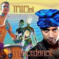 Tribal Trance Dance — Various Music Mosaic Artists, Music Mosaic