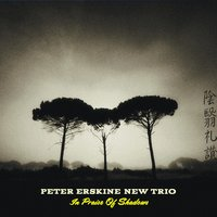 In Praise of Shadows — Peter Erskine, Vardan Ovsepian, Damian Erskine, Peter Erskine New Trio, Rich Breen