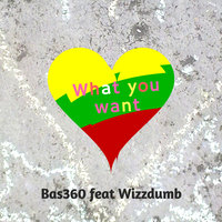 What You Want — Bas360, Bas360 feat. Wizzdumb