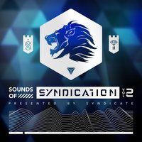 Sounds of Syndication, Vol. 2 (Presented by Syndicate) — Syndicate