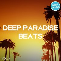 Deep Paradise Beats, Vol. 3 — сборник