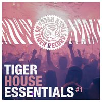Tiger House Essentials, Vol. 1 — сборник