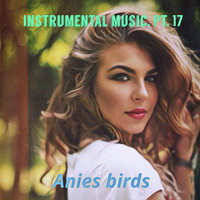 Instrumental Music, Pt. 17 — anies birds