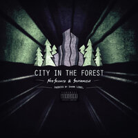 City in the Forest — Nate Schultz, Santangelo