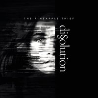 Dissolution — The Pineapple Thief