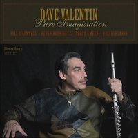 Pure Imagination — Dave Valentin