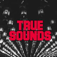 Babylon SP — True Sounds