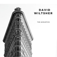 The Acoustics — DAVID WILTSHER