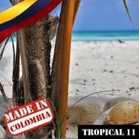 Made In Colombia: Tropical, Vol. 11 — сборник