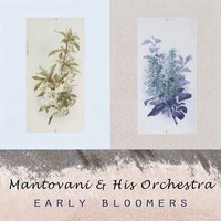 Early Bloomers — Mantovani & His Orchestra