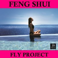 Feng Shui — Fly Project
