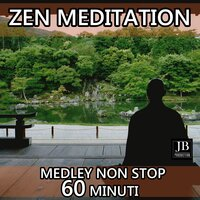 Zen Meditation Medley: Quella Luce / Butterfly Wings / Sorridi Fratello / Snow on the Sahara / Riflessi / Noi nell'Universo / Ombre nel Silenzio / I Belong to You / Insieme a Te / Regis / Fairy Love Song / La Paz Lifestyle / Papeete Beach / Damascus / Ele — Fly Project
