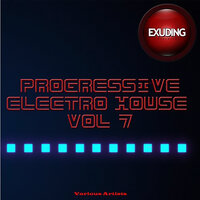 Progressive Electro House, Vol. 7 — Amedi