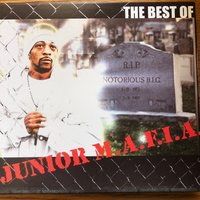 The Best of JUNIOR M.A.F.I.A. — Junior M.A.F.I.A.