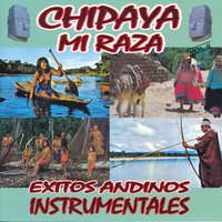 Exitos Andinos Instrumentales Vol. II — Chipaya