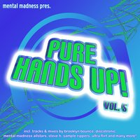 Mental Madness Pres. Pure Hands Up! Vol. 5 — сборник