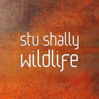 Wildlife — stu shally