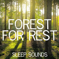 Forest for Rest — Sleep Sounds