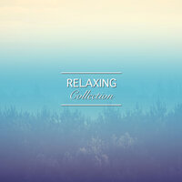 #12 Relaxing Collection for Massage & Pilates — Massage Music, Pilates Workout, Zen Meditation and Natural White Noise and New Age Deep Massage, Massage Music, Zen Meditation and Natural White Noise and New Age Deep Massage, Pilates Workout