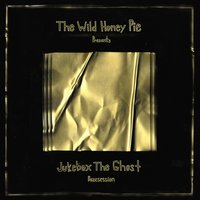 The Wild Honey Pie Buzzsession — Jukebox the Ghost