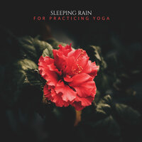 19 Sleeping Rain Album for Practicing Yoga — Ambient Nature White Noise, ASMR Rain Sounds, Rain Hard, ASMR Rain Sounds, Ambient Nature White Noise, Rain Hard