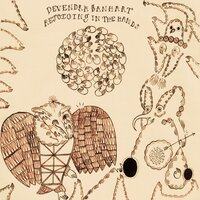 Rejoicing in the Hands — Devendra Banhart