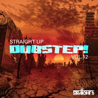Straight Up Dubstep! Vol. 12 — сборник