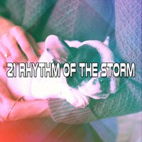 21 Rhythm of the Storm — Thunderstorms
