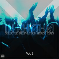 In Rhythm - Selected Deep & Tech House Cuts, Vol. 3 — сборник