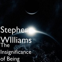 The Insignificance of Being — Stephen Williams